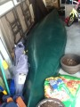 New canoe with paddles for the price of a used one!